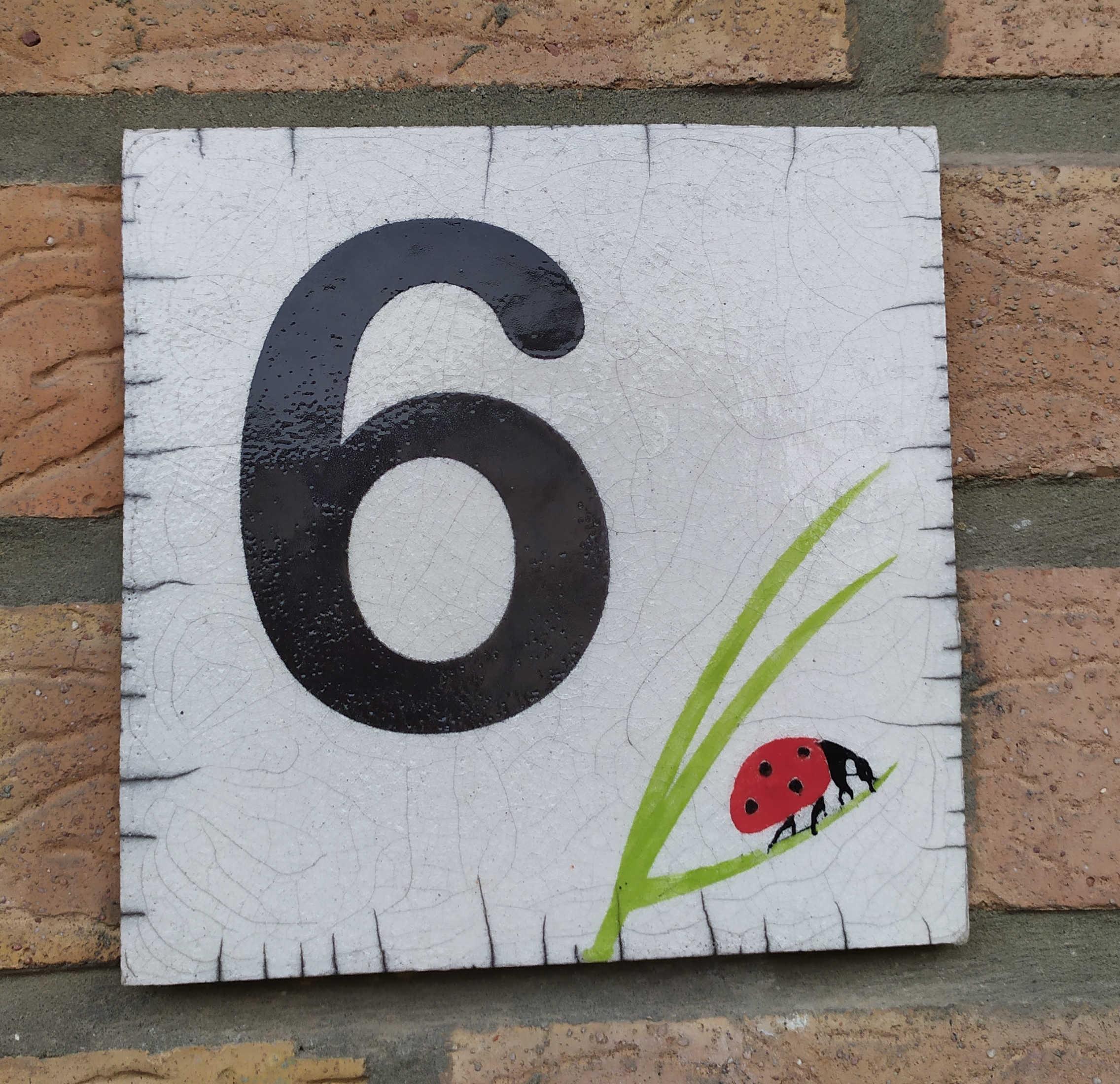 Plaque N°6 coccinelle